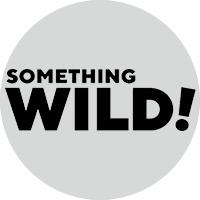 Something WILD!